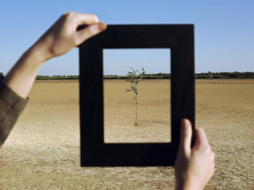 Twee handen houden een passe-partout vast waar een boom door te zien is