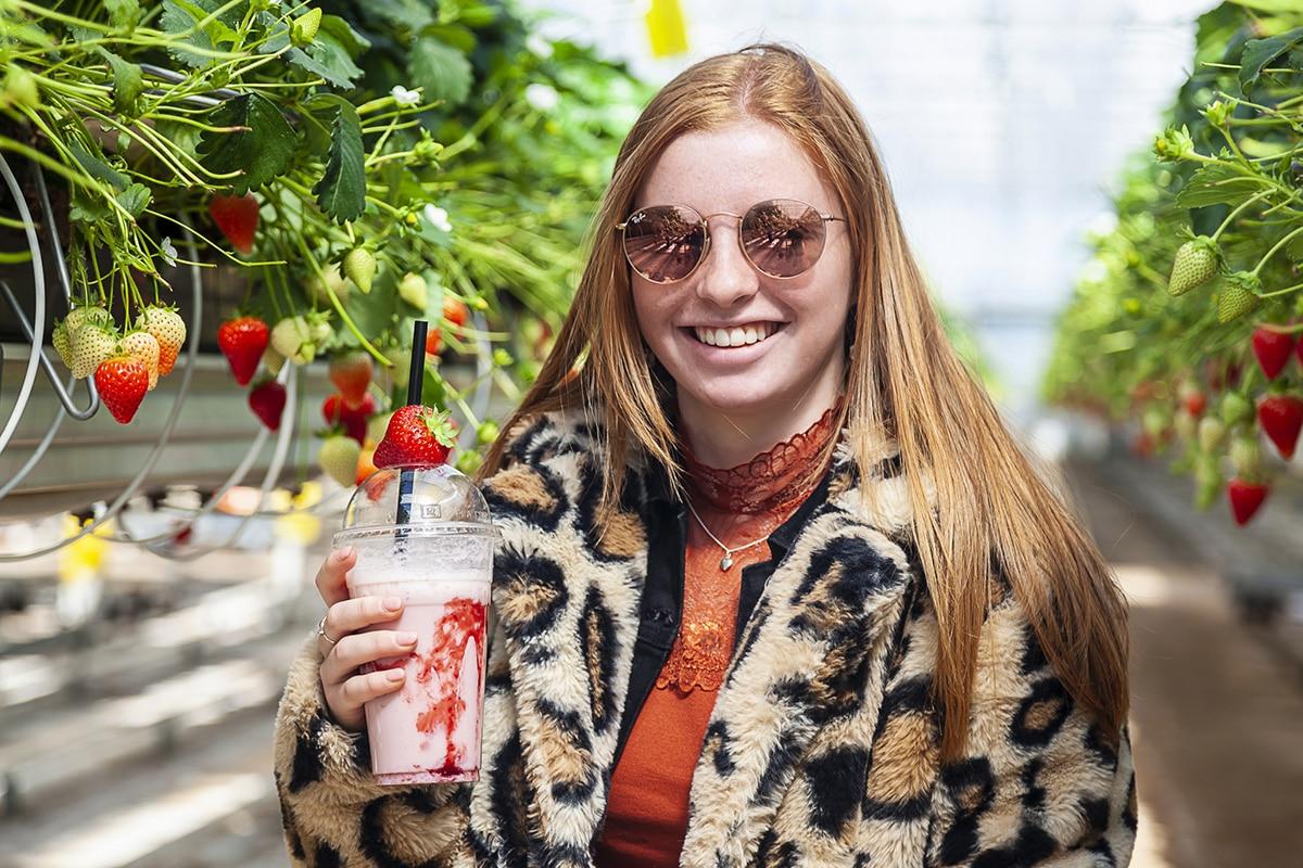 Jonge vrouw staat met een aardbeien milkshake in een Aardbeien kas. Witbalans staat op daglicht.