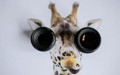 Waar moet je op letten bij het kopen van een lens